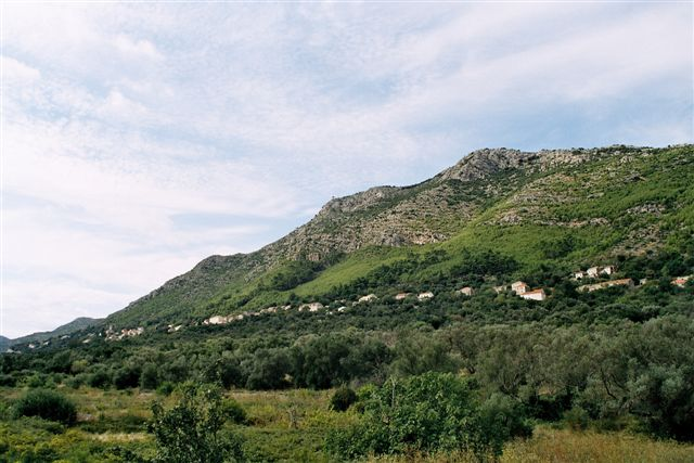 Babino Polje