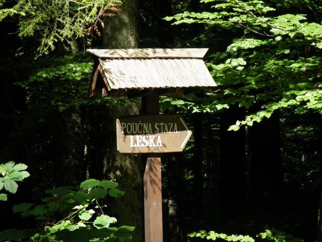 Ha a Risnjak Nemzeti Parkba látogatunk, lehetőleg ne hagyjuk ki az  esélyt, hogy végigsétáljunk Horvátország első oktató ösvényén.