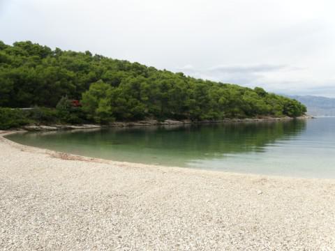 Strand, Pucisca