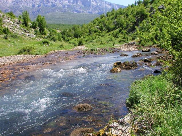 Krčić-folyó