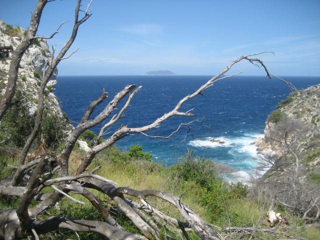 Bisevo-sziget