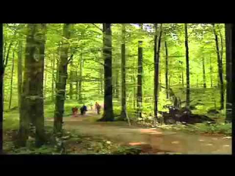 Risnjak Nemzeti Park - Risnjak Nemzeti Park videó