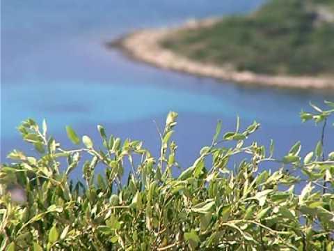 Pasman-sziget - Pašman szépsége